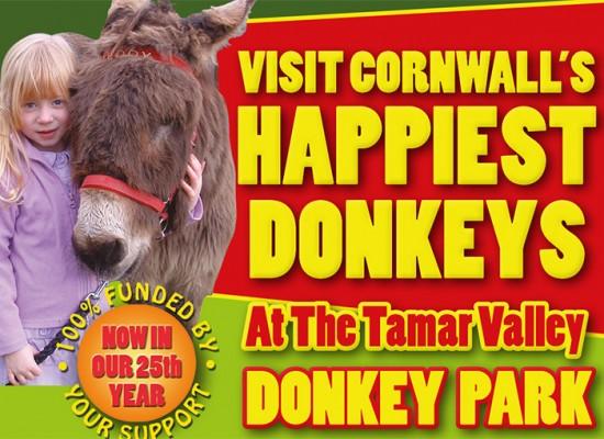 Donkey Park Leaflet Tourist Leaflet Design