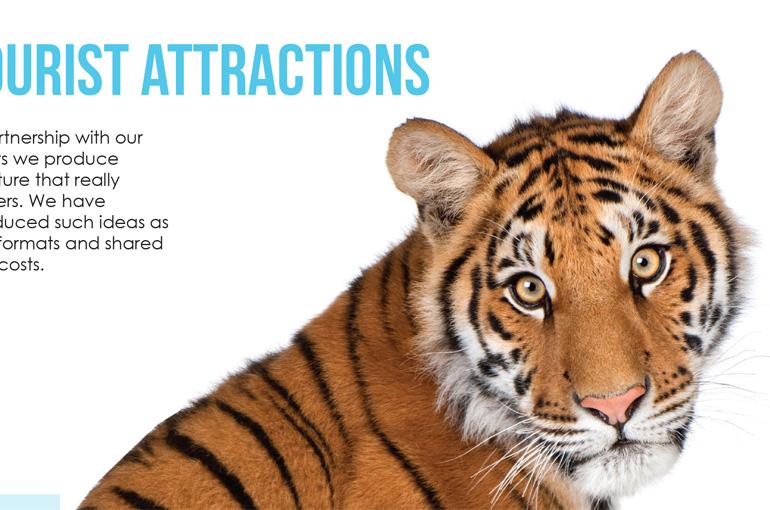 Print for Tourism Brochure Design