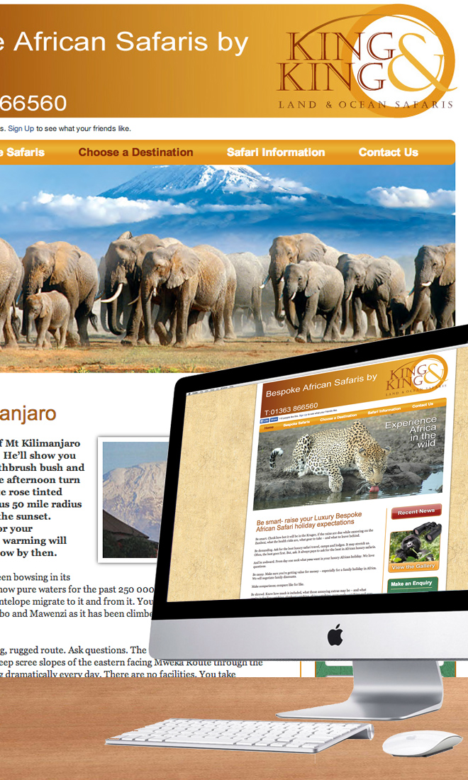 Bespoke African Safari Website