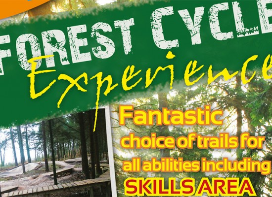 Forest Cycle Hire Tourist Leaflet Design