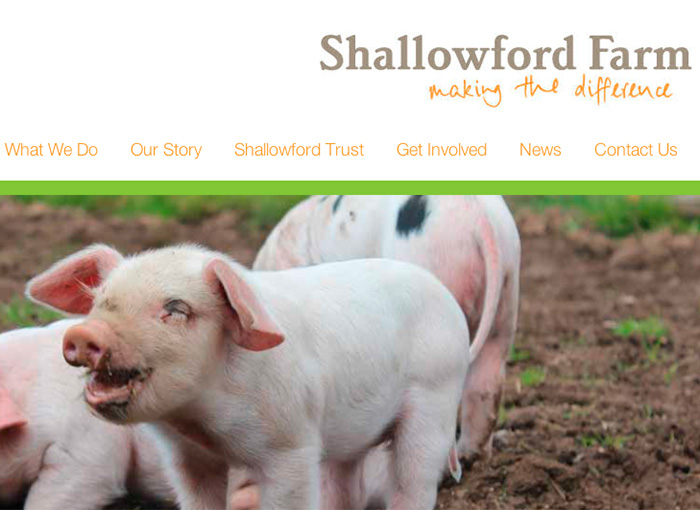 Shallowford Farm Website Design